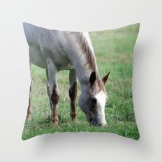 White Horse in Field Throw Pillow