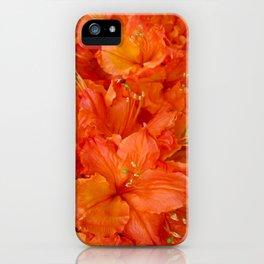 Give me an Orange, Julius iPhone Case