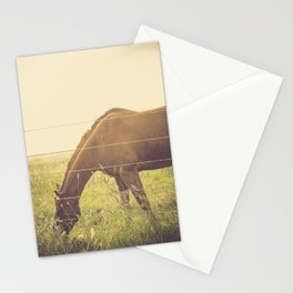 Texas Horse Grazing Stationery Cards