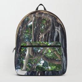 Banyan Tree in Honolulu Backpack