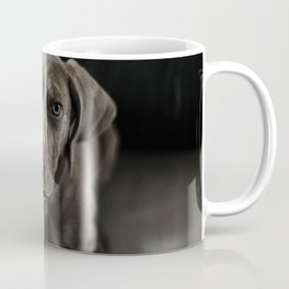 Weimaraner puppy looking sweet Coffee Mug