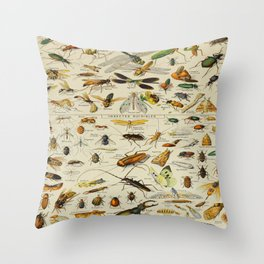 Insects Vintage Scientific Illustration French Language Encyclopedia Lithographs Educational Throw Pillow