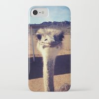 ostrich iPhone & iPod Cases featuring OSTRICH by Kaitlin Bloom