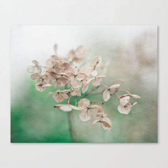 Little Furrows  Canvas Print