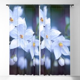 Jasmine Nightshade Flowers #3 #floral #art #society6 Blackout Curtain
