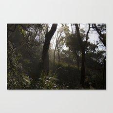 Light Forest Canvas Print