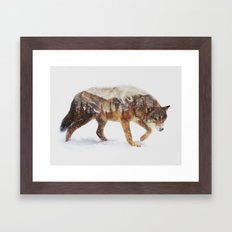 Arctic Wolf Framed Art Print