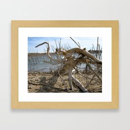 """Bird Root"" Framed Art Print"