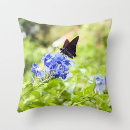 Butterfly on a Purple Flower Photography Print Throw Pillow