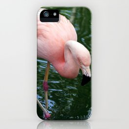 Flamingo Pretty In Pink iPhone Case