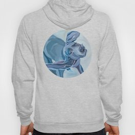 Great Dane Dog Shake Hoody