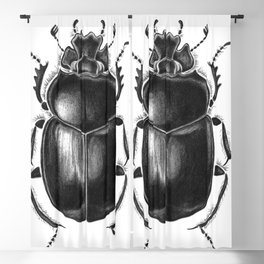 Beetle 13 Blackout Curtain
