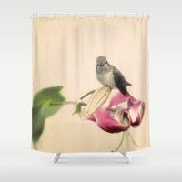 wesley bird Shower Curtains featuring Bird by Pure Nature Photos