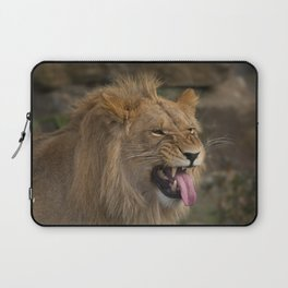 Young Lion Showing His Teeth Laptop Sleeve