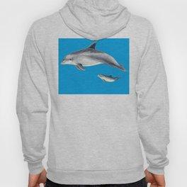 Bottlenose dolphin blue background Hoody