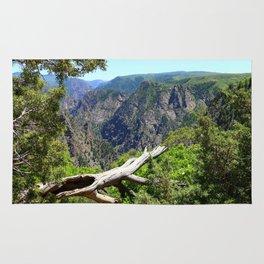 Black Canyon Of Gunnison View Rug