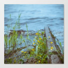 flowers by the waterline Canvas Print