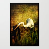 fishing Canvas Prints featuring Fishing by JMcCool