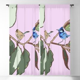 Splendid Fairy-wren Malurus splendens Blackout Curtain