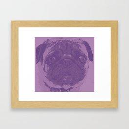 Purple Pug Framed Art Print