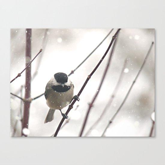 Chickadee in Winter Canvas Print