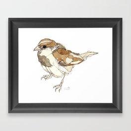 Sparrows | Watercolor Bird Illustration Framed Art Print