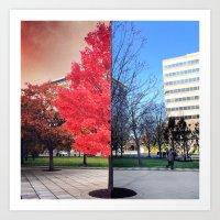 Fall Vs Spring Art Print