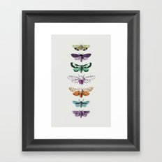 Techno-Moth Collection Framed Art Print