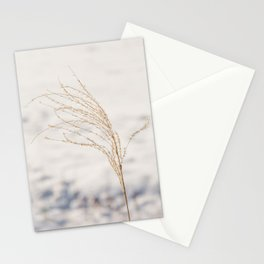 Plume of ornamental grass 'Miscanthus Sinensis Silberfeder' in the snow. Stationery Cards