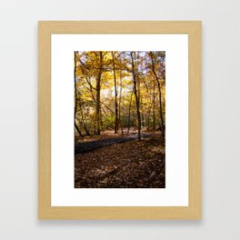 A Seat in the Sunlight Framed Art Print
