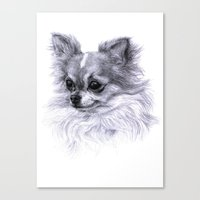 chihuahua Canvas Prints featuring Chihuahua by Danguole Serstinskaja