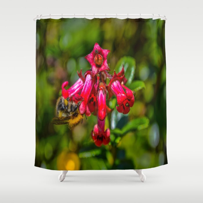 Bee On Red Flowers Shower Curtain By Cornishcreationsuk