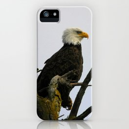 eagle striking a pose iPhone Case