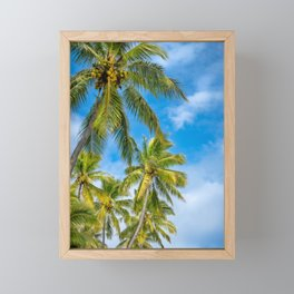 Coconut Palm Trees against the blue sky at Isle of Pines in New Caledonia. Framed Mini Art Print