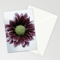Drops on a Daisy Stationery Cards