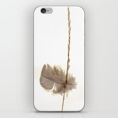 Feathered Grass iPhone & iPod Skin