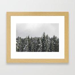 Snow Trees Framed Art Print