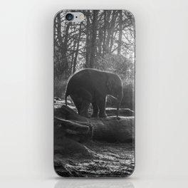 Elephant Black and White Photograph iPhone Skin