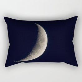 Just A Sliver Rectangular Pillow