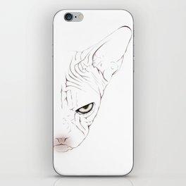 Sphynxcat digital drawing iPhone Skin