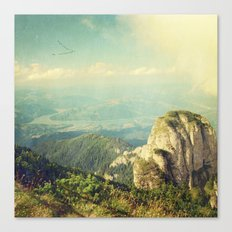 Winged Migration Canvas Print