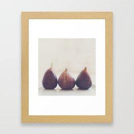 We 3 Figs Framed Art Print