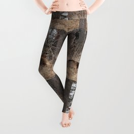 White-Tailed Deer Leggings