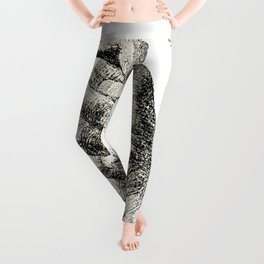 Cast from the Right Hand Of Abraham Lincoln Leggings