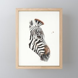 Zebra Framed Mini Art Print