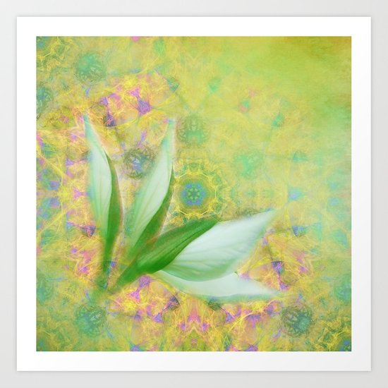 Bauhinia buds against textured green background Art Print