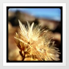 Mountain weeds. Art Print