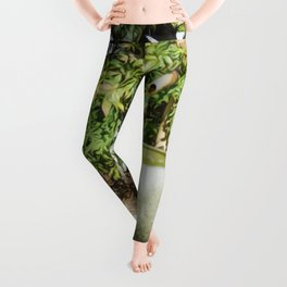 Japanese garden 6 Leggings