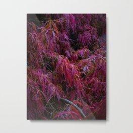 Crimson Queen Metal Print