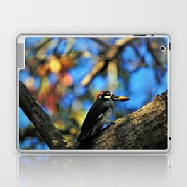 Gotcha! Autumn Woodpecker Laptop & iPad Skin
